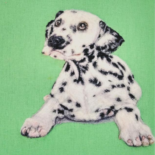 Dalmatian no background_edited for facebook ad